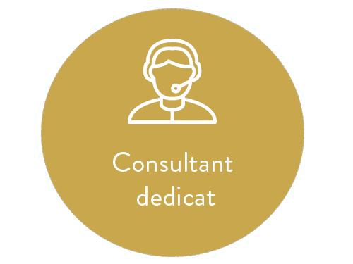 Oferta consultant dedicat