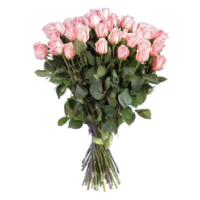 Buchet 25 Trandafiri